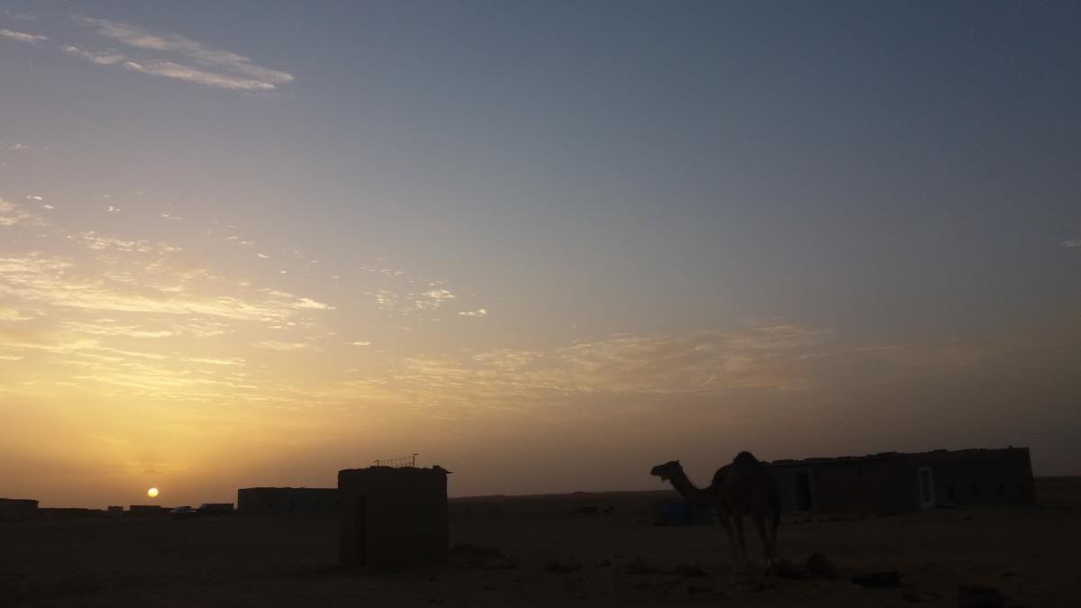 Resultado de imagen de campamentos saharauis el confidencial saharaui